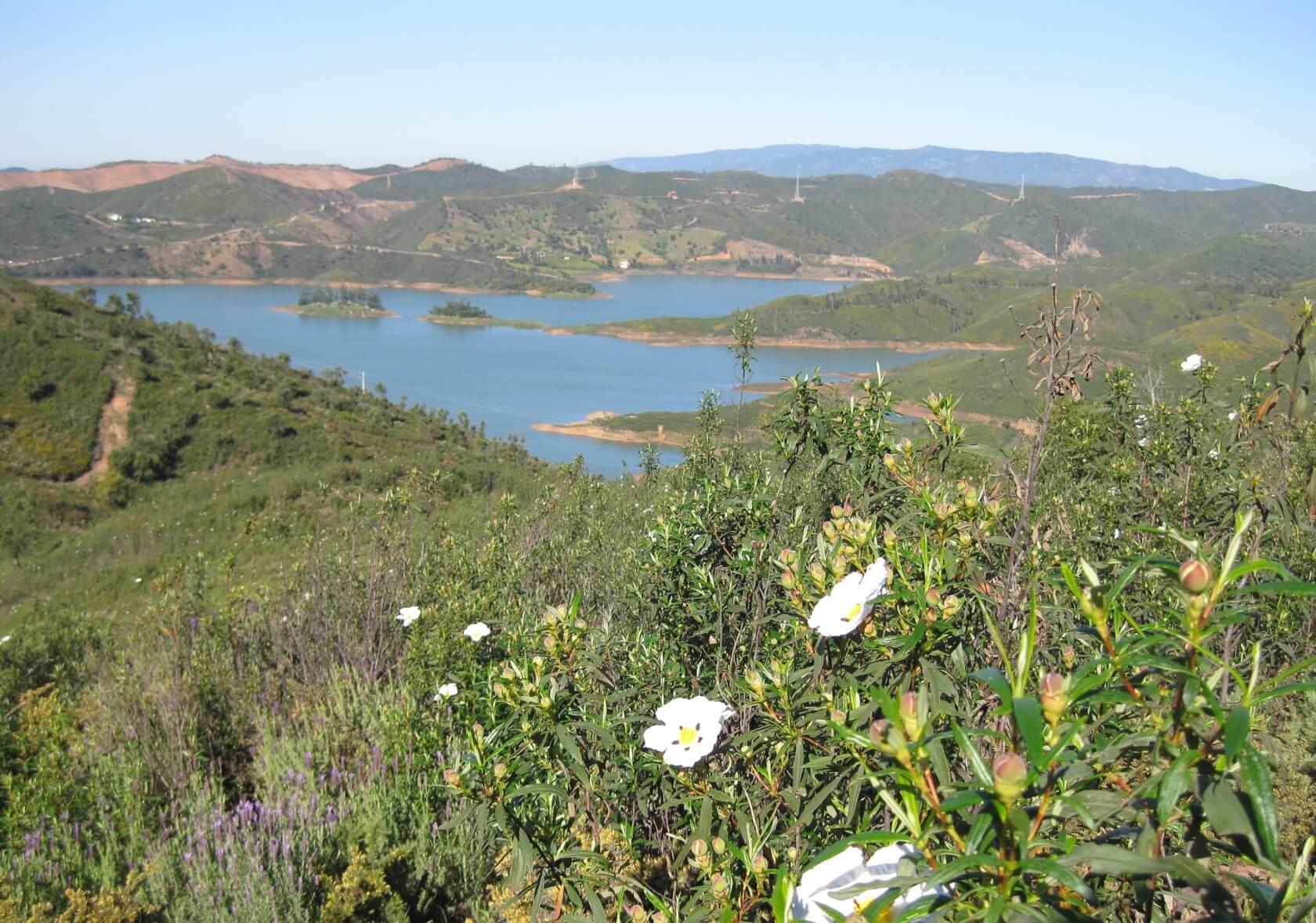 Im Hügelland der Serra − auf archäologischen Pfaden durch die Zistrosenblüte