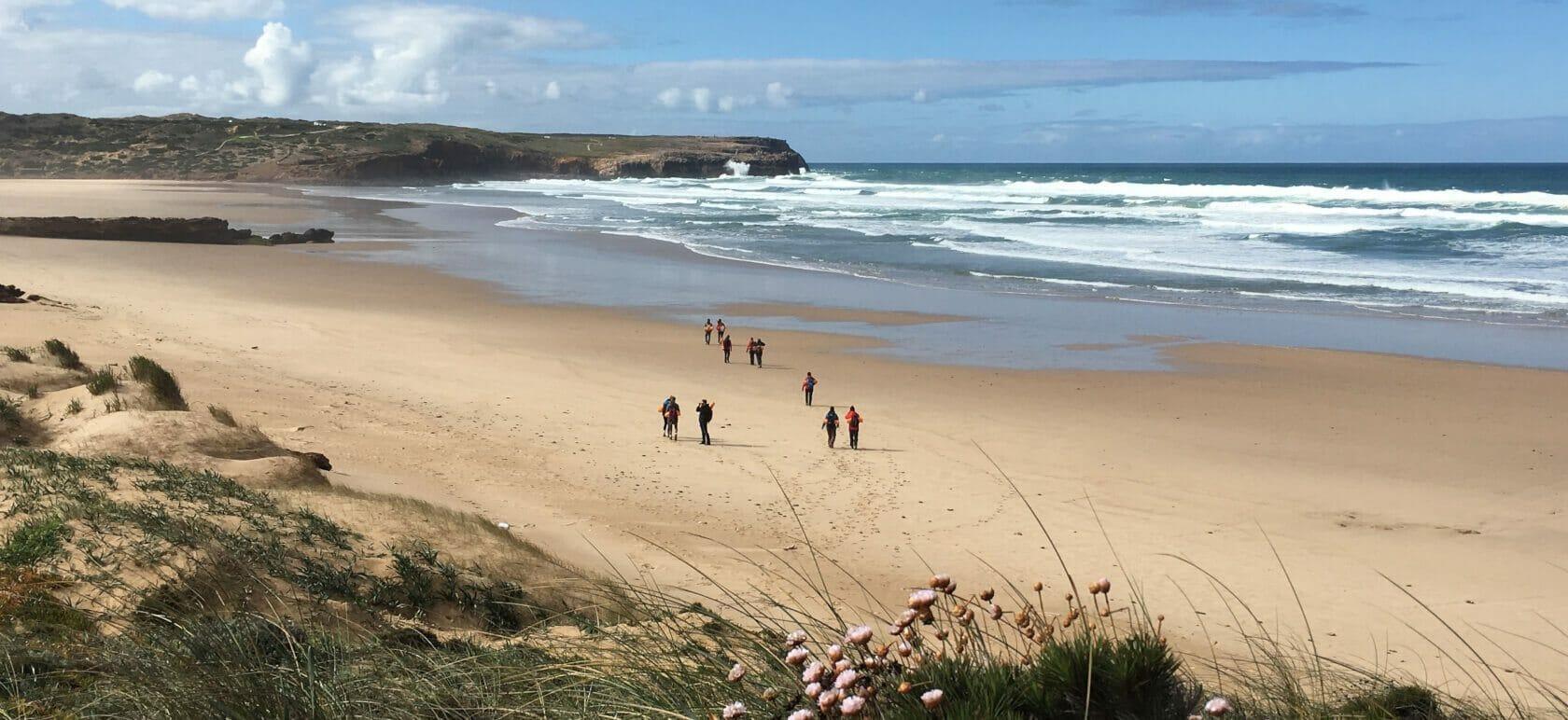 Dünenmeer im Blütenrausch – faszinierende Westküste
