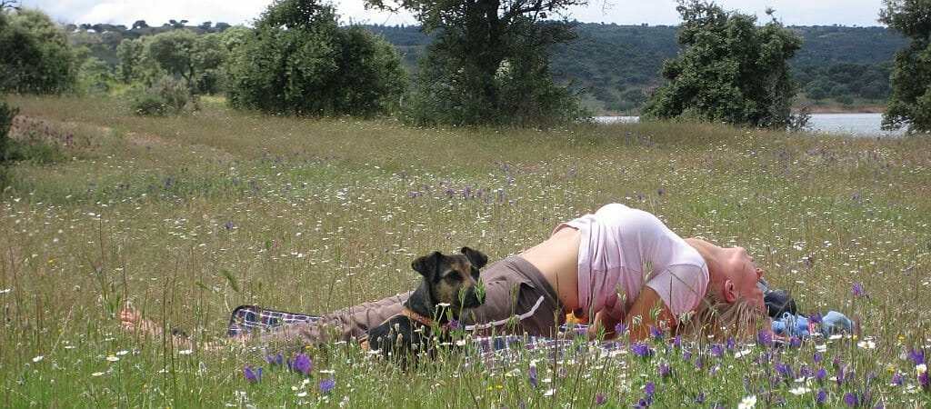 Loslassen in der Natur mit Yoga