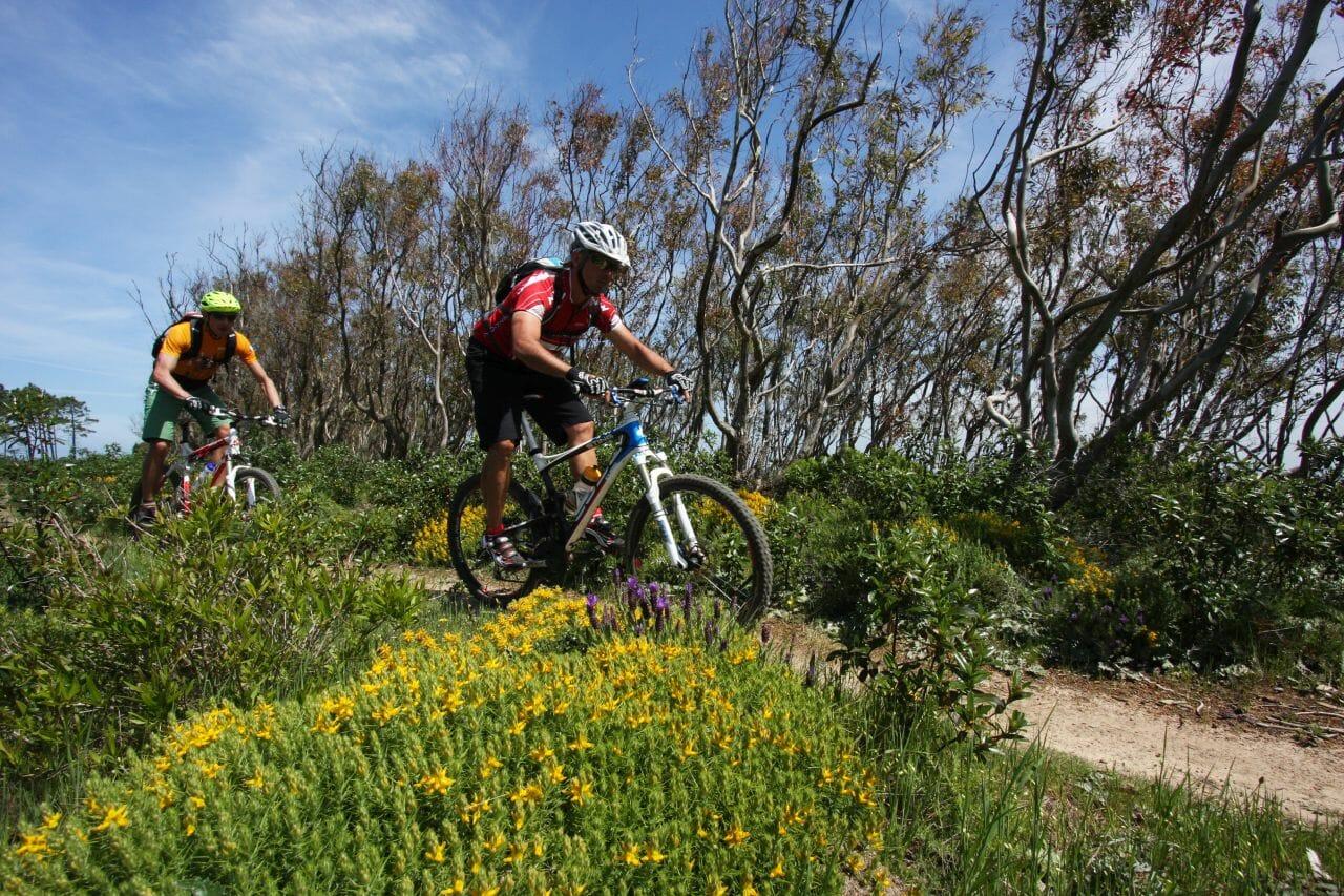 Yoga und Biken Algarve: Sportlich oder ganz entspannt per e-Mountainbike durch die Küstenlandschaft